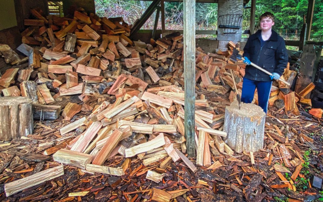 Firewood Therapy - Heating with a wood stove is a big commitment and it helps with exercise. Having a grandson to talk with while you work is an added bonus.