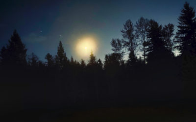 Evening Sky Show
